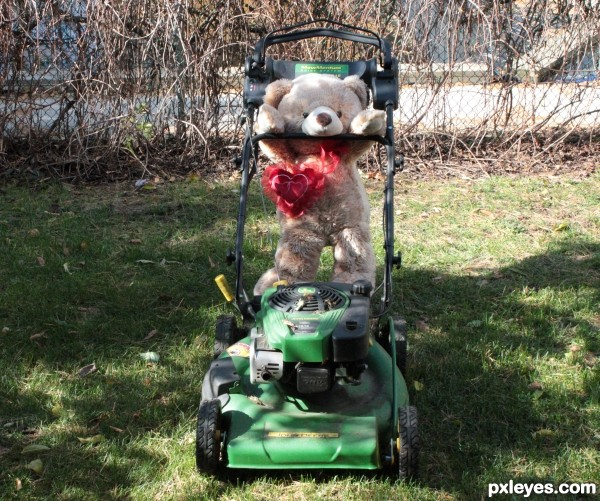 Teddette trying to help with the lawn