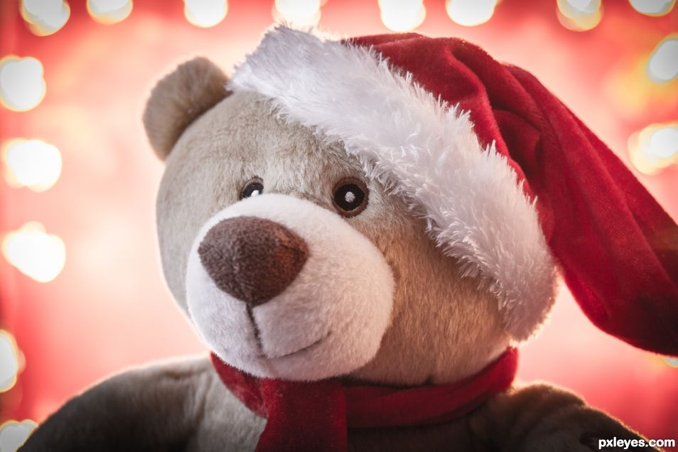A teddy for Christmas