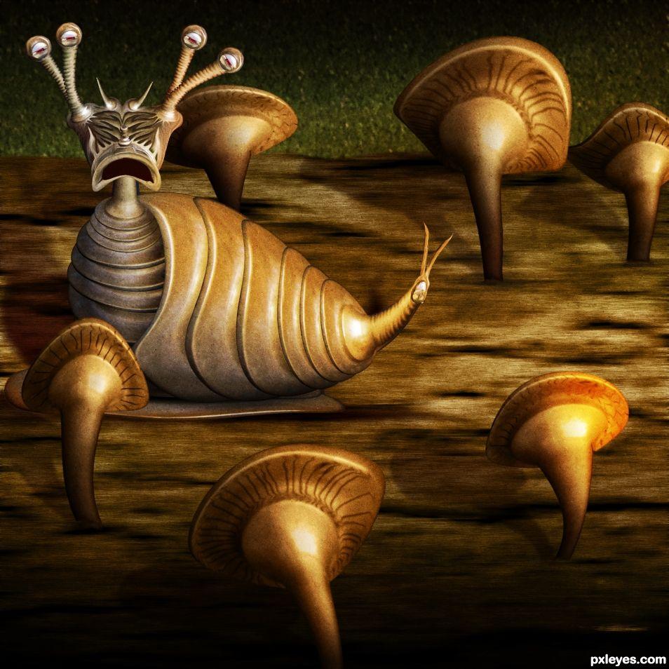 Mushroom Log Snail