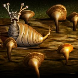 Mushroom Log Snail Picture