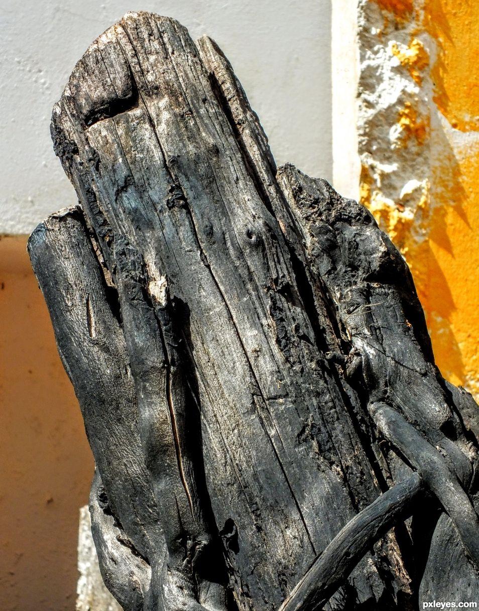 Shaped Log