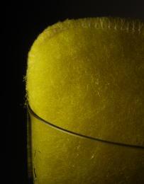 Glasssponge