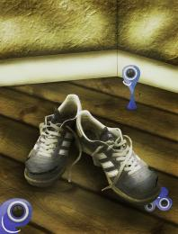 APairOfShoes2011