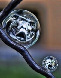 BubbleBabes