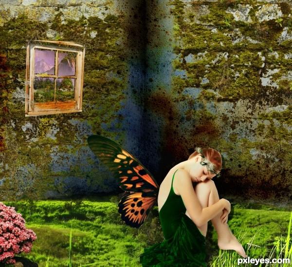 fairies cry too