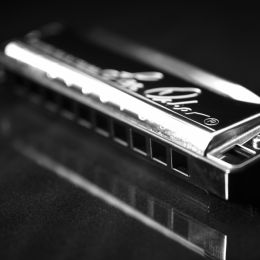 MrHarmonicasinstrument