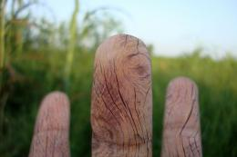 Woodenfingers