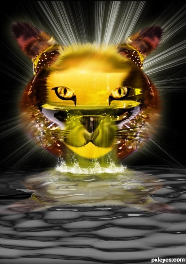 cristal cat