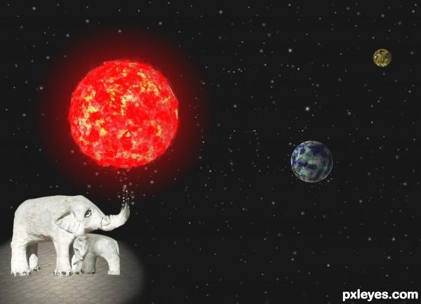 Elephant Elegy
