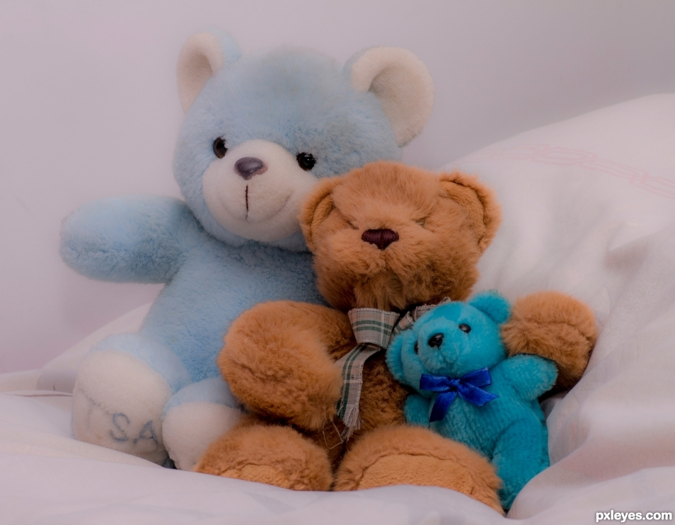 Teddy Bears are forever