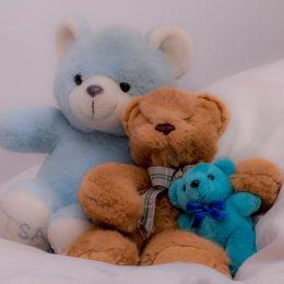 TeddyBearsareforever