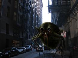 Spider Alley