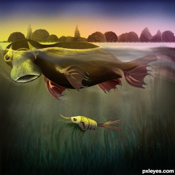DuckBill and Shrimp