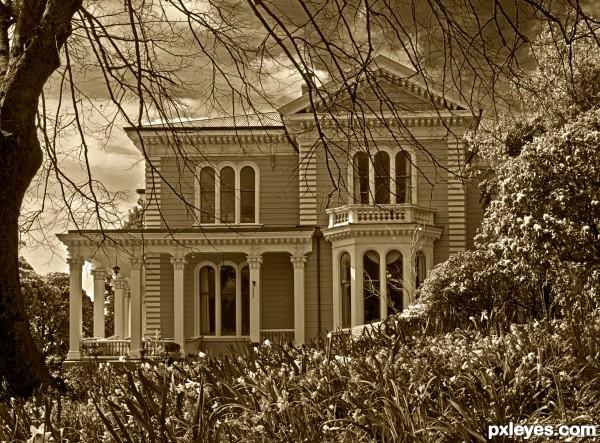 Melrose House - Nelson