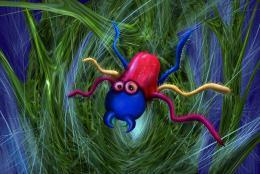 Spiderslair