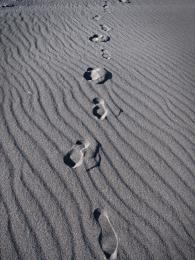 Black Sand Tracks