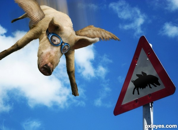 Swine Flew photoshop picture)