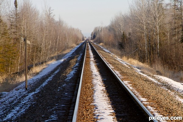 rails across Sak Zim Bog