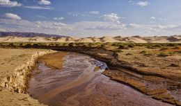 Gobi Desert, Outer Mongolia Picture