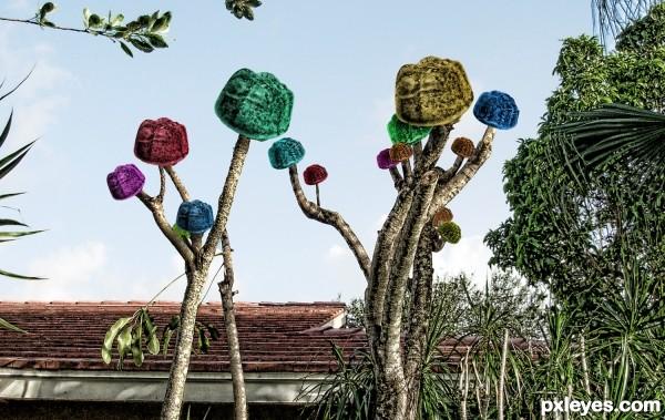 Ju Ju Fruit Tree