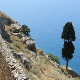 At the slopes of Nafplion castle Picture