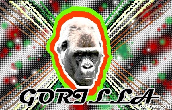 Flashy Gorilla