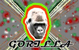Flashy Gorilla Picture