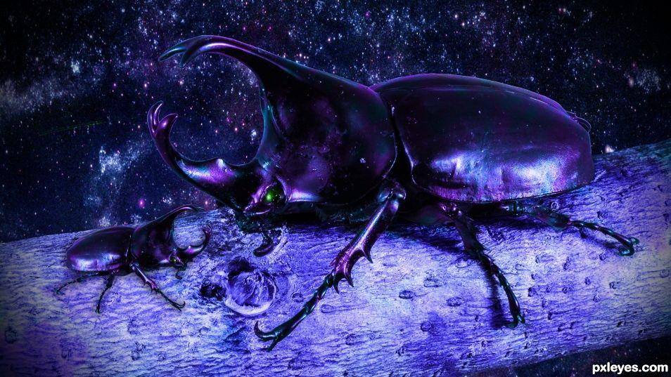 Cosmic Beetle