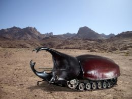 War bug