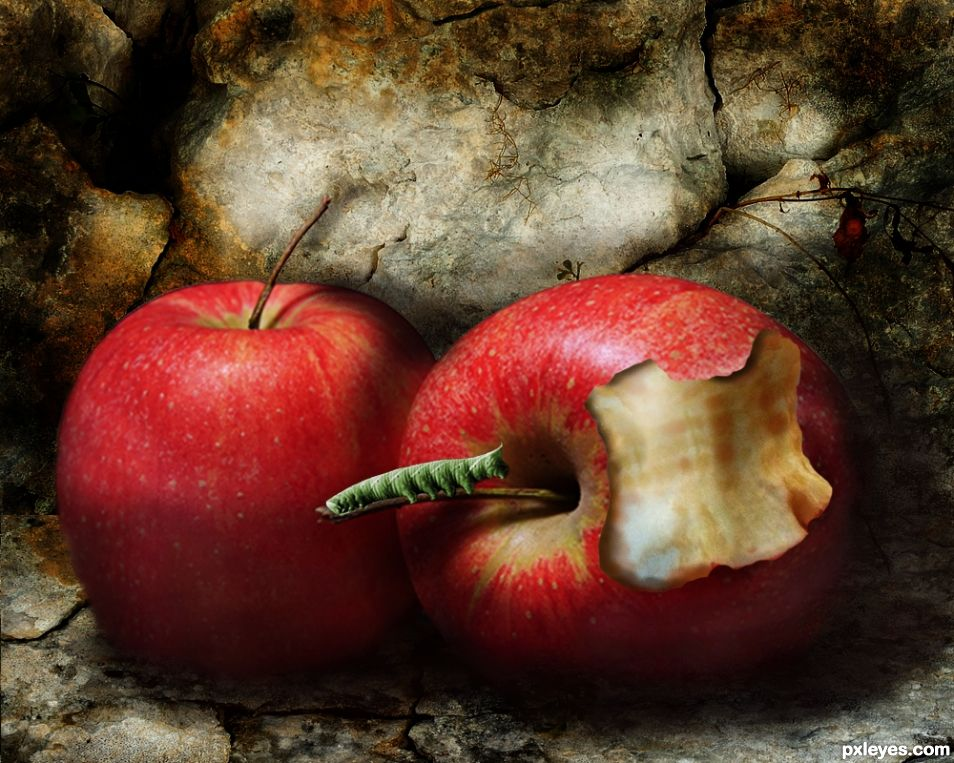 Two Apples....And A Worm picture, by George55 for: two apples ...