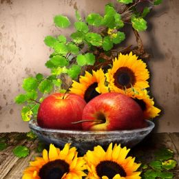 Applestilllife