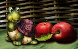 Still Life With Apples, and a Turtle,