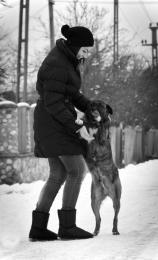 Doglove