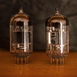 Twinbulbs