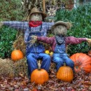 two scarecrows photoshop contest