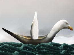 Seagullboat