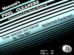 PoolCleaners
