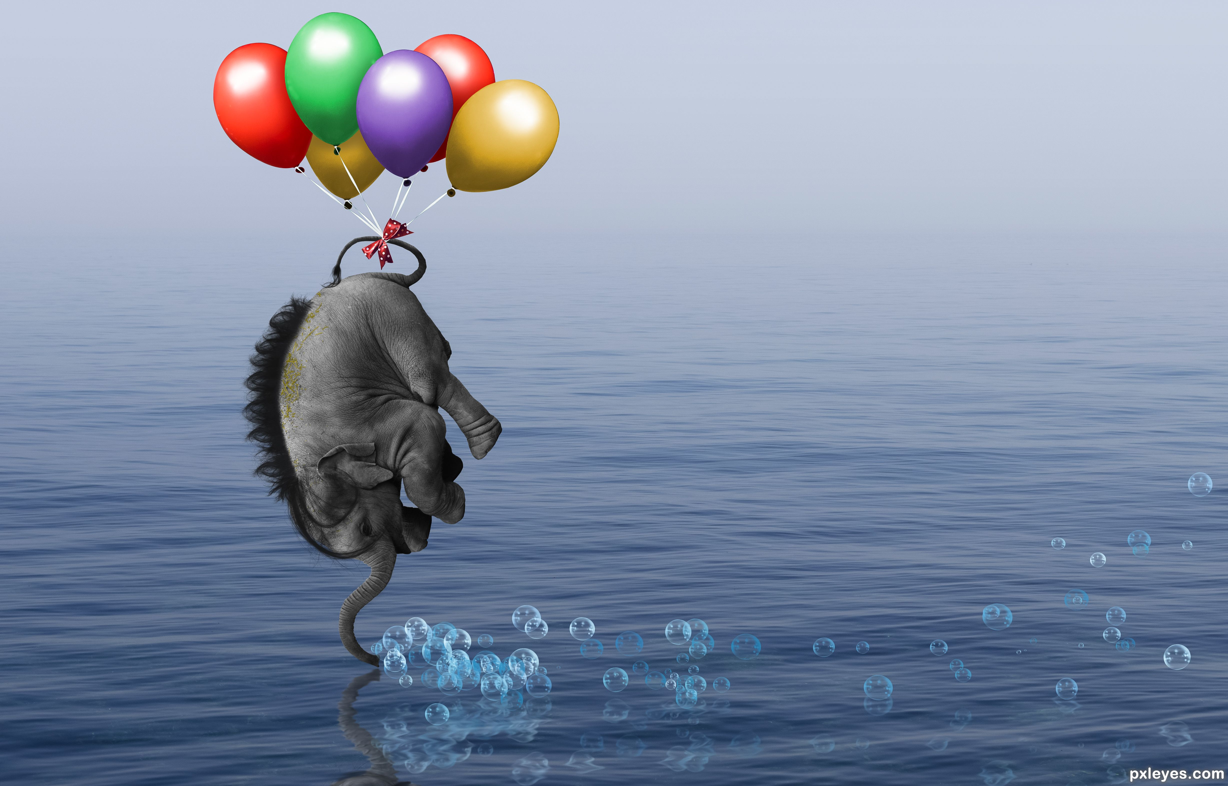 Elephant Float Picture By Rturnbow For Up In The Air