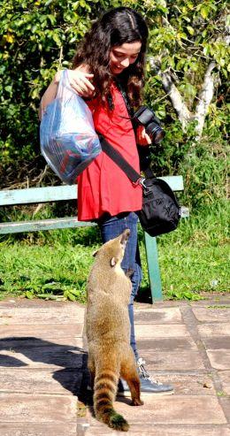 Take care of your bag