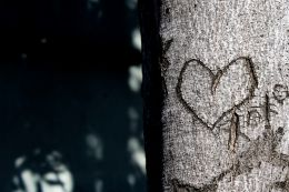 Add a tiTree With Heart & XOXO Carving