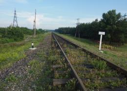 Trainstopshere