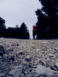 stoneroad
