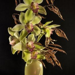 OrchidsandOnyx