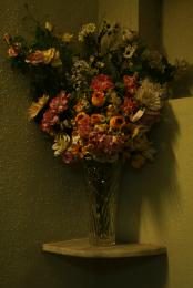 flowers and flowers