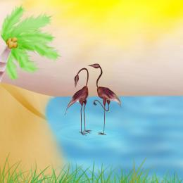 FlamingoIsland