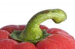 Red pepper macro