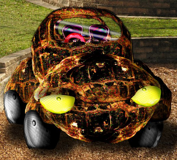 Turtle Beetle w/Pink Interior