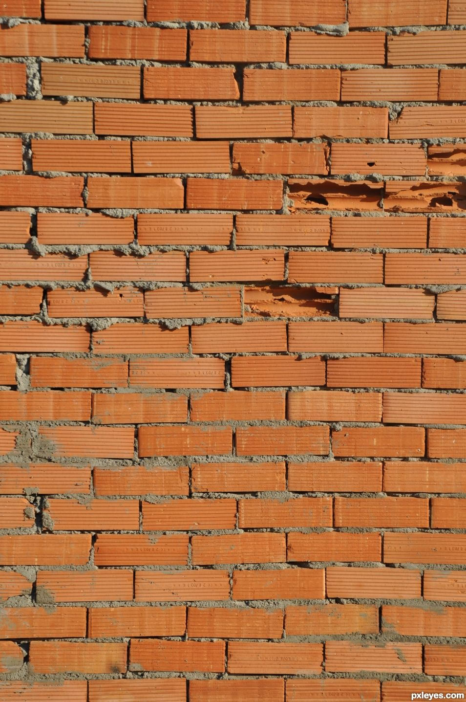Bricks on the wall