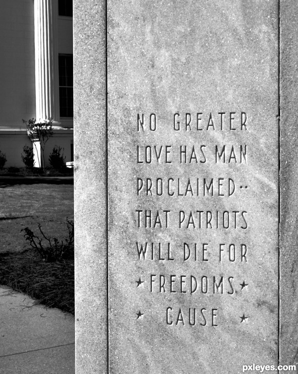Freedoms Cause