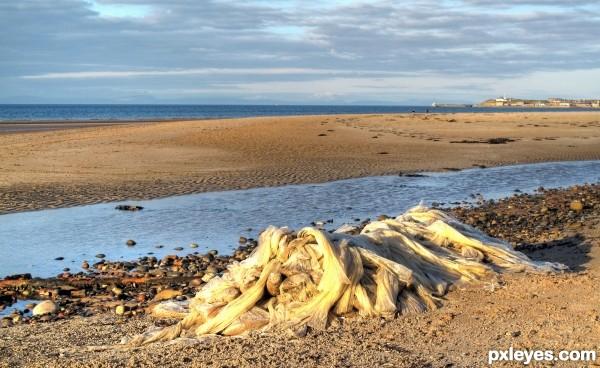 Plastic Desecration